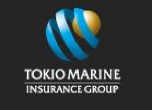 Tokio Marine Holdings Life Insurance Tokio Marine Nichido Tokio Marine Hcc Business Text People Logo Png Pngwing